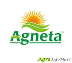 Agneta Agri India Private Limited