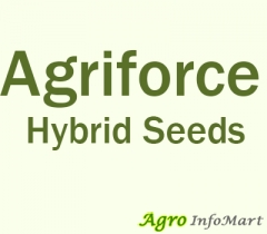 Agriforce Hybrid Seeds
