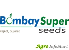 Bombay Super Hybrid Seeds Pvt Ltd