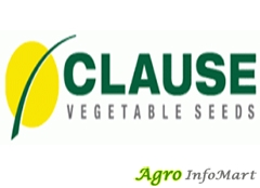 CLAUSE INDIA PVT LTD