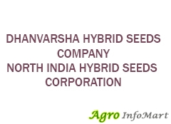 DHANVARSHA HYBRID SEEDS COMPANY NORTH INDIA HYBRID SEEDS CORPORATION