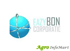 Eazy Bond Corporation