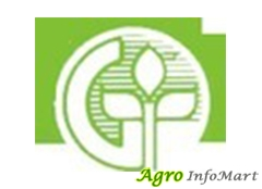 GANDHI AGRO SEEDS PVT LTD