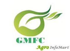 GMFC Private Limited