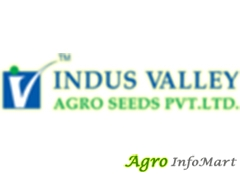 Indus Valley Agro Seeds Private Limited