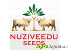 Nuziveedu Seeds Ltd