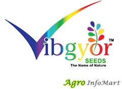 VIBGYOR SEEDS PVT LTD