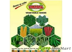 VINAYAK SEEDS PVT LTD