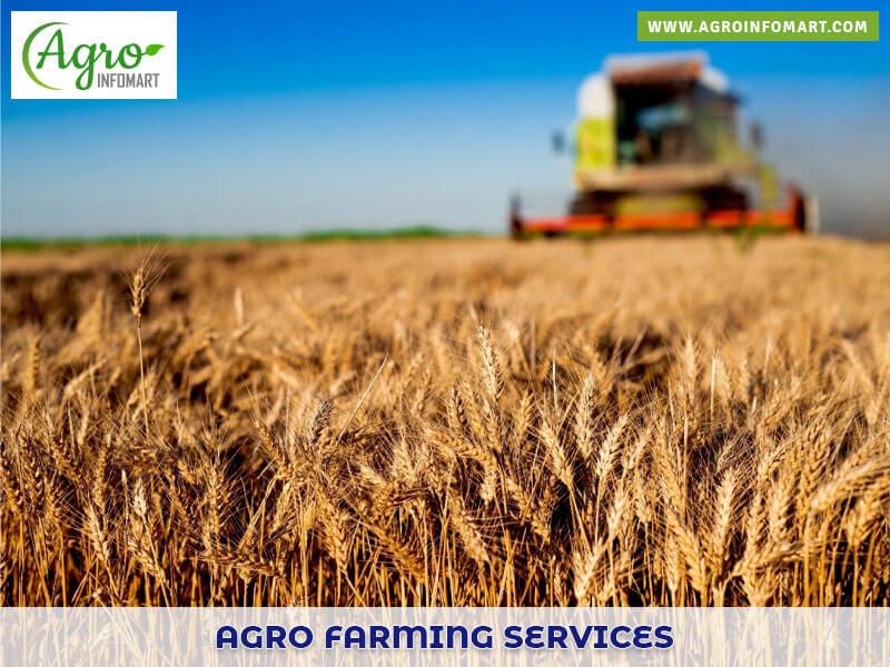 Agro Farming Services Agriculture Farming Service Provider