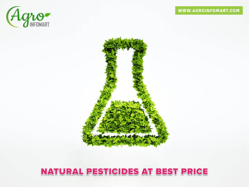 Natural Pesticides Manufacturers Suppliers Wholesalers