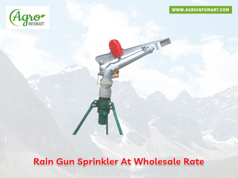 Rain Gun Sprinkler Manufacturers Suppliers Wholesalers
