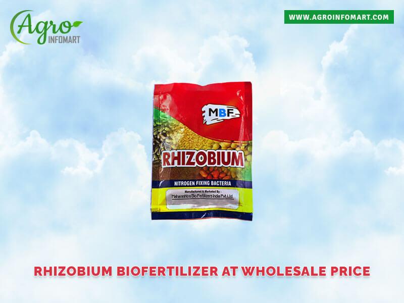 Rhizobium Biofertilizer Manufacturers Suppliers