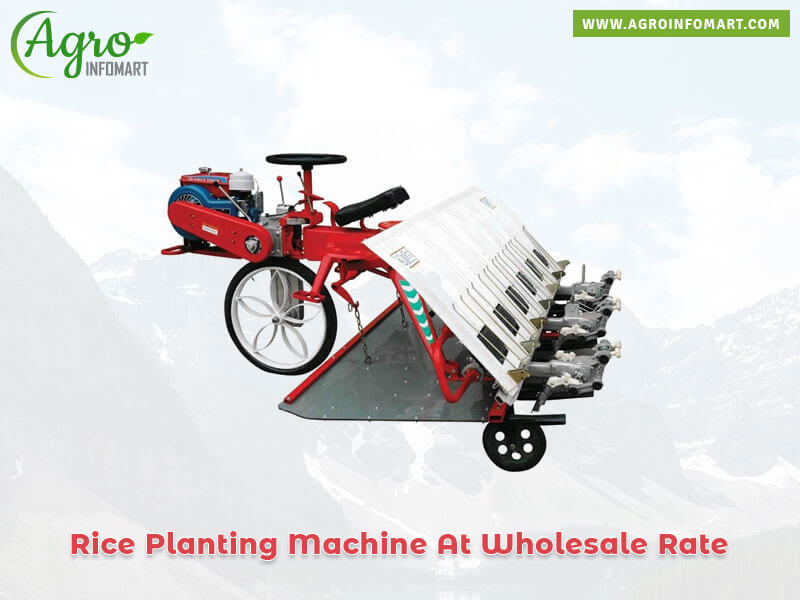 Rice Planting Machine Manufacturers Suppliers