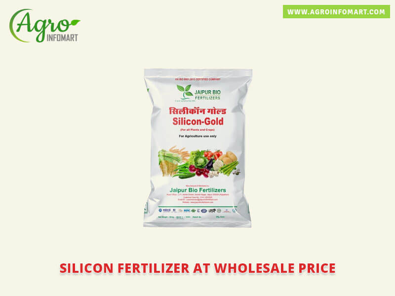 Wholesalers Manufacturers Dealers Amp Exporters Of Silicon