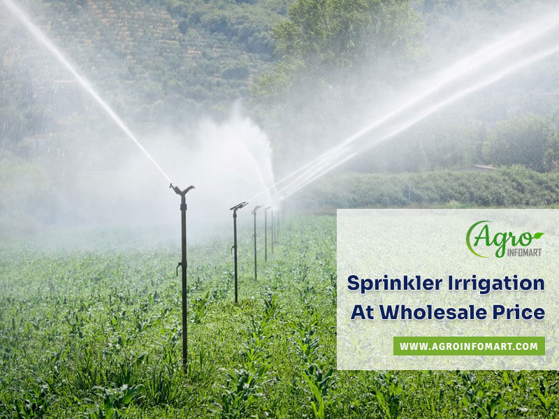 Sprinkler Irrigation Manufacturers Suppliers Wholesalers