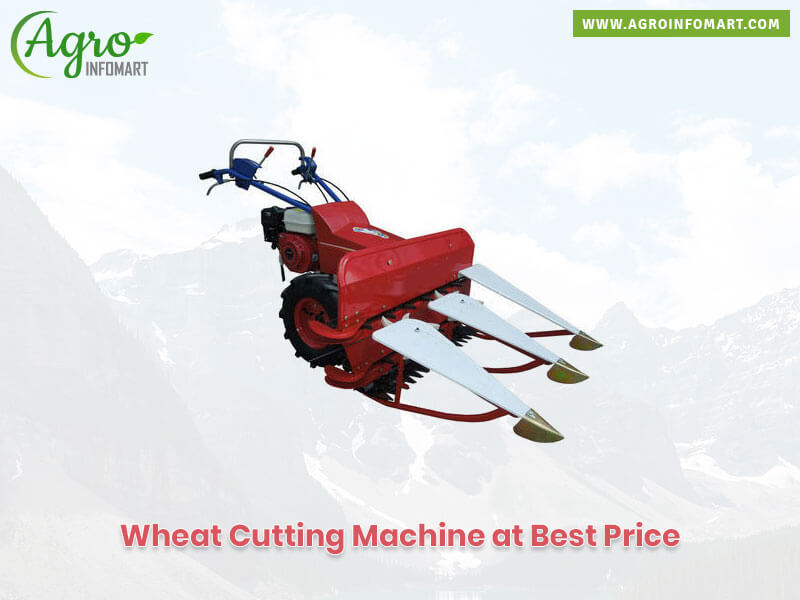 Wheat Cutting Machine Manufacturers Wholesalers Traders